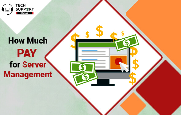 Learn How Much Should you Pay for Server Management